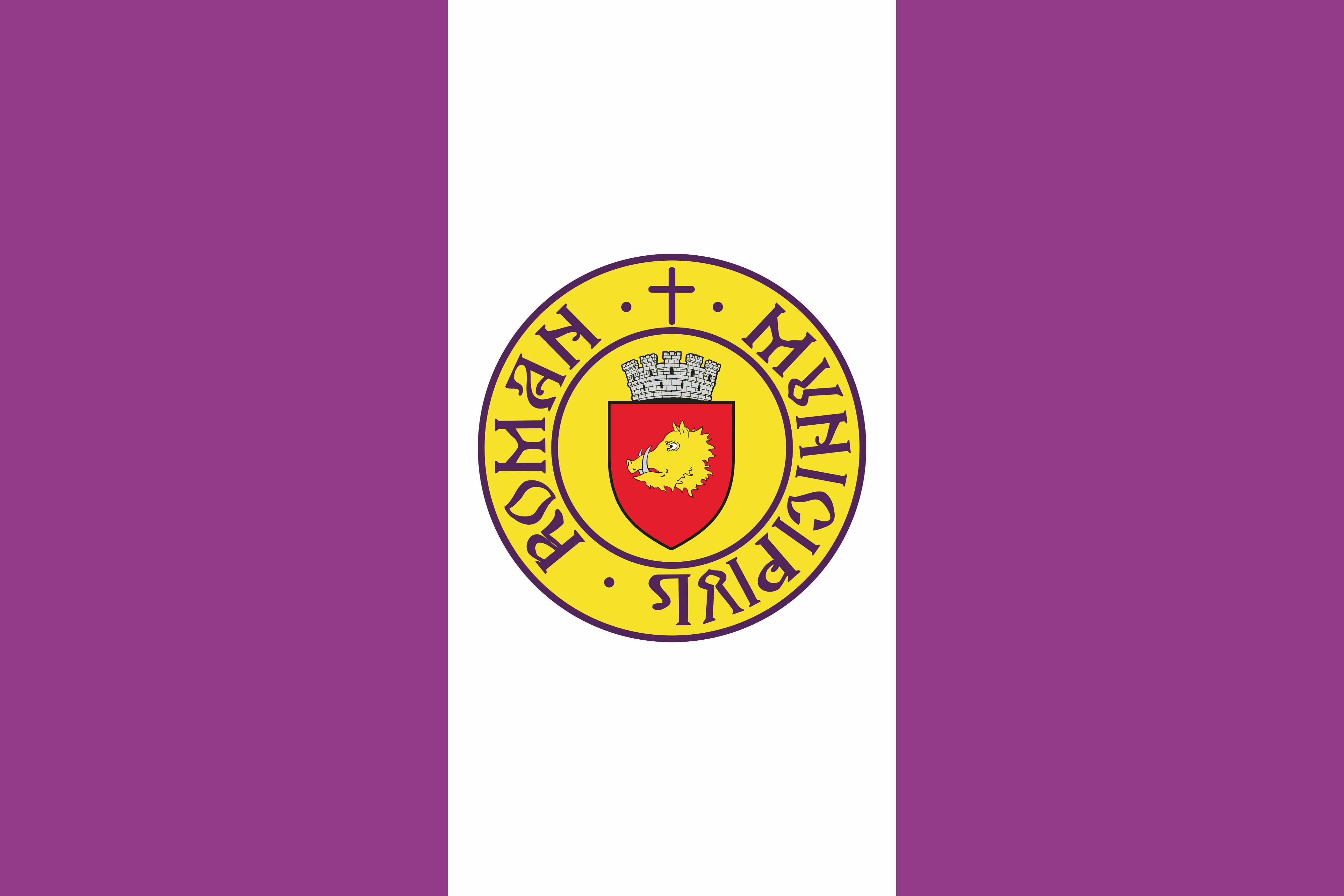 Municipiul Roman